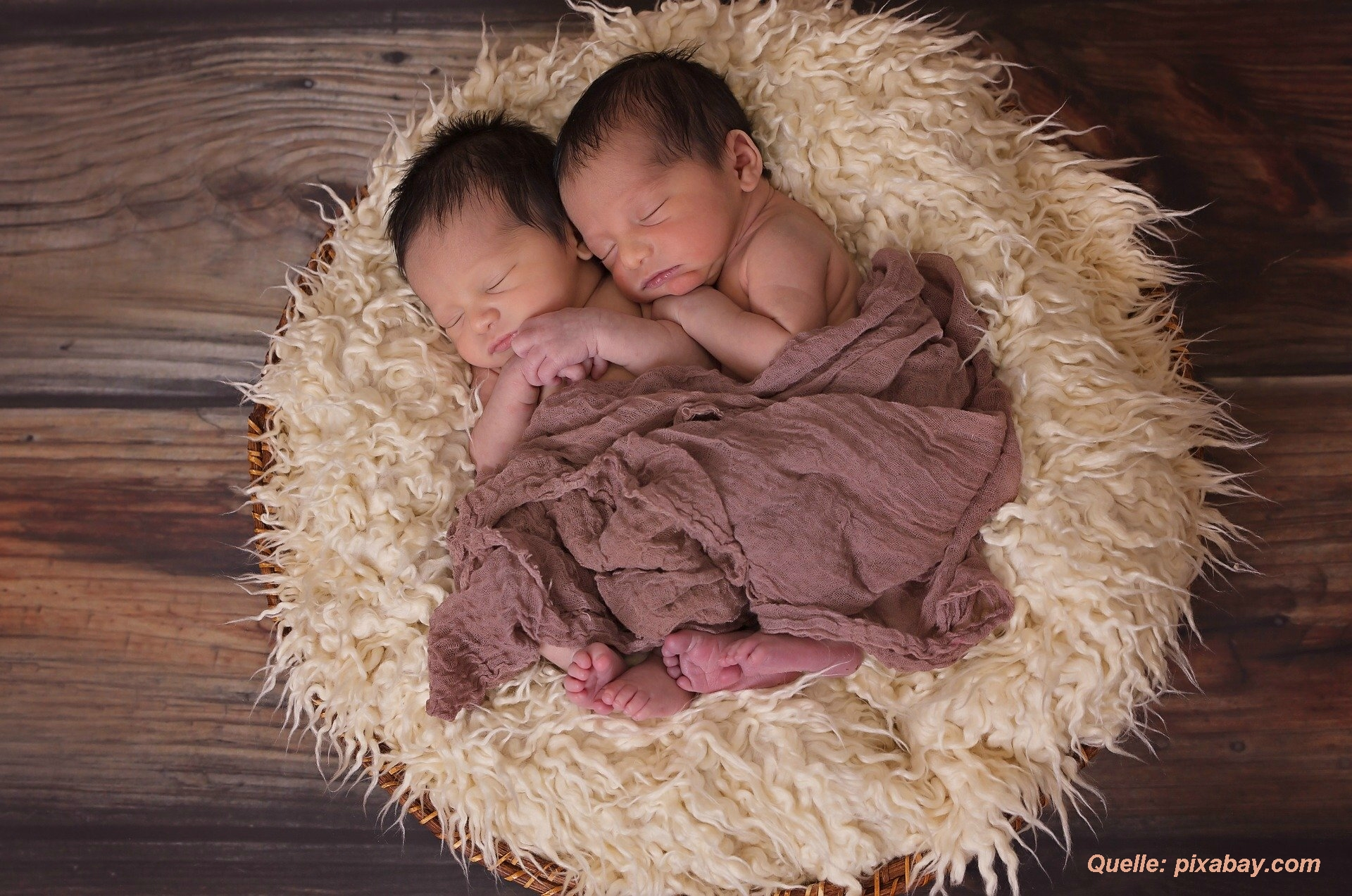 Zwillinge nach der Geburt auf Fell