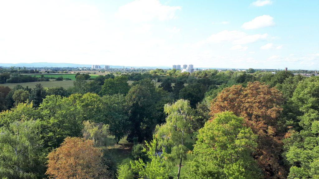 Blick über den Hauptfriedhof.